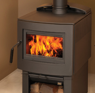 The Fusion Metallic Black Wood Stove