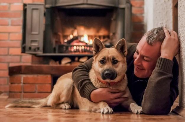Handsome Older Man with Handsome Good Dog, Enjoying the Warm Fireplace